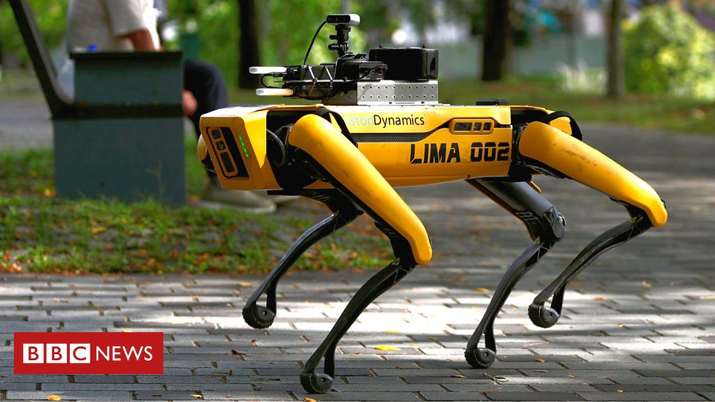 Robot Dogs Now Walking Parks To Encourage Social Distancing!